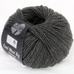 Cool Wool Big Kleur 617