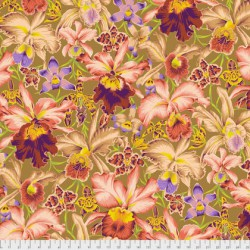 Orchids (PJ092.BROWN)