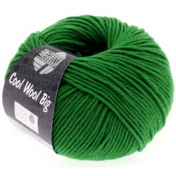 Cool Wool Big Kleur 939